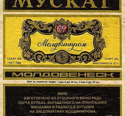 muskat1-1