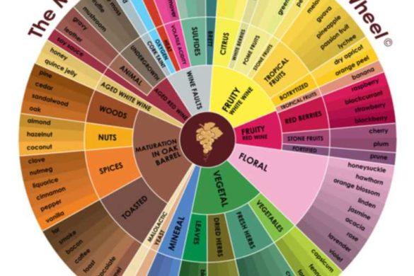 Wine-Aroma-Wheel-Master-Sommelier-1