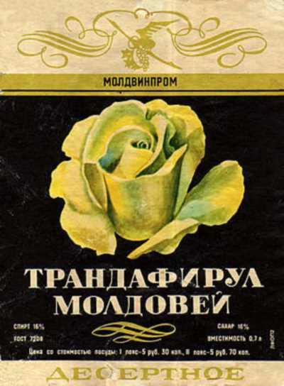 trandafirul_moldovei-1