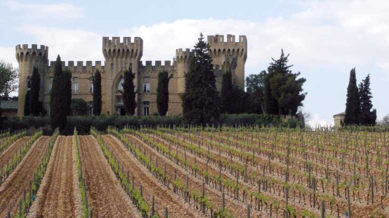 Chateauneuf_vineyard_&_castle-1