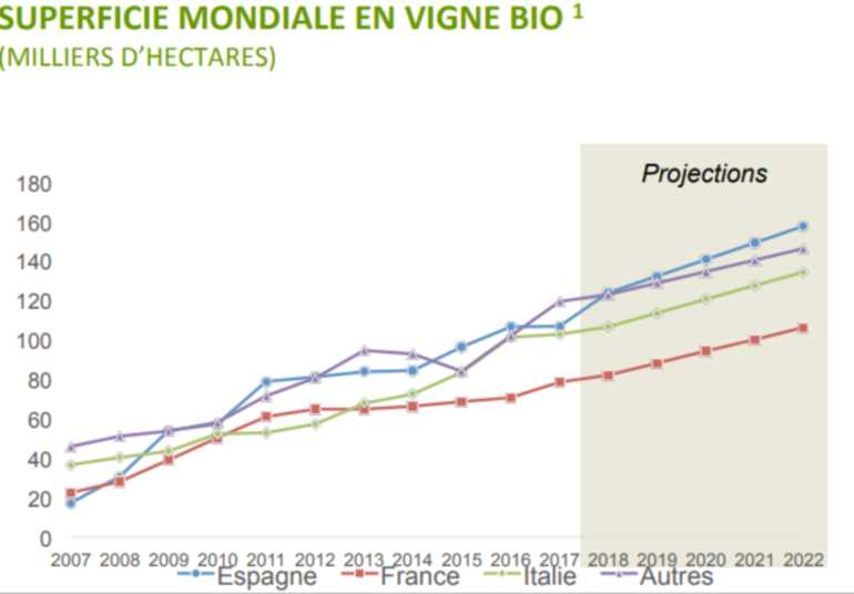 production_de_vin_bio_monde-1